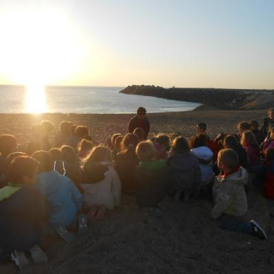 Lecture au coucher du soleil